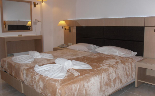 Отель Halkidiki Palace Hotel