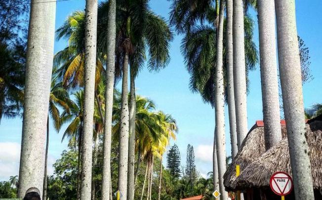 Отель Villa Cubanacan La Granjita