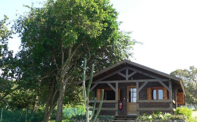Отель Villa Cayo Saetia