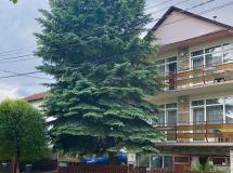 Apartment Pension Rideg Heviz 3*