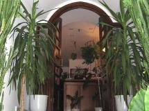 Отель Doxa Hotel