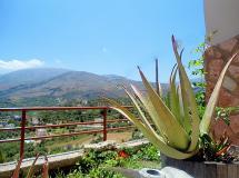 Отель Aloe Villa