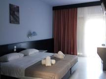 Отель Skion Palace Beach Hotel