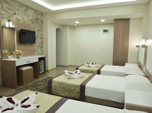 Baron Hotel 2020