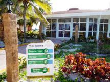 Отель Villa Iguana