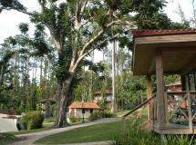Rancho San Vicente 2020