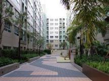 301 Condo & Hotel 3*