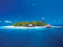 Angsana Resort & Spa Ihuru Maldives  5*