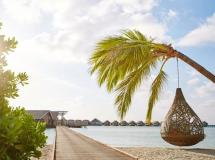 Lux* South Ari Atoll (ex. Diva Island Resort & Spa; White Sands Resort & Spa) 5*